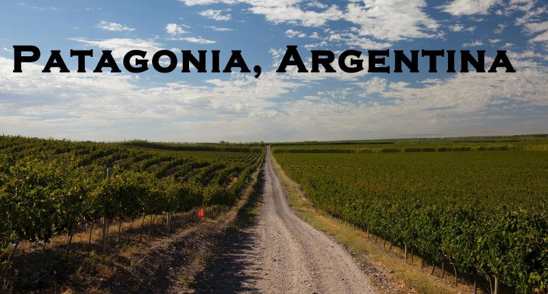 ruou-vang-argentina-4